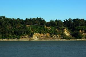 The bluffs of Columbus, Kentucky, viewed from Belmont.