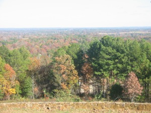 The view from Love's Lookout, just outside Jacksonvile, Texas