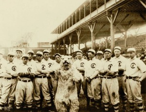 photo-chicago-chicago-cubs-and-their-mascot-stands-behind-sepia-1908